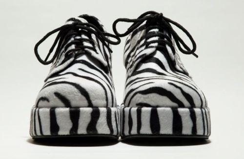 zebra-shoes
